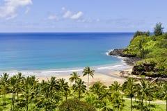 Bella spiaggia hawaiana Fotografia Stock