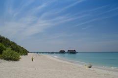 Bella spiaggia - Maldive Immagine Stock