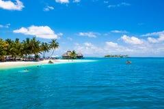 Bella spiaggia sabbiosa nella tonalità delle palme per lo sport acquatico immagini stock