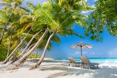 Bella spiaggia Sedie sulla spiaggia sabbiosa vicino al mare Vacanza estiva e concetto di vacanza Fondo tropicale ispiratore immagini stock libere da diritti