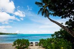 bella spiaggia in Seychelles Fotografie Stock Libere da Diritti