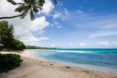 bella spiaggia in Seychelles Fotografia Stock