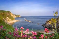 Bella spiaggia sopra di Dorset, Regno Unito Fotografia Stock Libera da Diritti