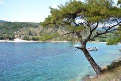 Bella spiaggia sull'isola di Thassos Fotografia Stock