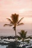 Bella spiaggia tropicale Fotografia Stock Libera da Diritti