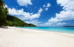 Bella spiaggia tropicale ai Caraibi Immagine Stock