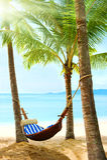 Bella spiaggia tropicale con la palma e la sabbia Fotografia Stock Libera da Diritti