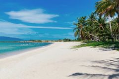 Bella spiaggia tropicale con le palme Fotografie Stock Libere da Diritti