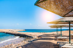 Bella spiaggia tropicale sul Mar Rosso fotografia stock libera da diritti
