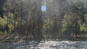 Bella sponda del fiume della montagna di estate, vista dalla barca, trasportante archivi video