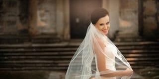 Bella sposa Immagini Stock