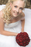 Bella sposa bionda Fotografia Stock Libera da Diritti
