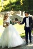 Bella sposa bionda elegante nella camminata bianca dello sposo e del vestito Immagini Stock