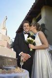 Bella sposa che bacia il suo sposo immagini stock