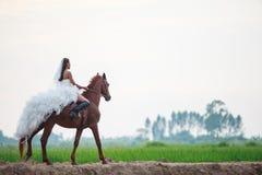 Bella sposa di bellezza nella guida nuziale bianca del costume di nozze di modo sul cavallo muscolare forte sul fondo rurale dell fotografie stock libere da diritti