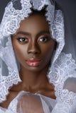 Bella sposa nera della pelle Immagini Stock Libere da Diritti