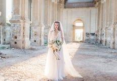 Bella sposa romantica nella posa di lusso del vestito dell'architettura bella Fotografie Stock Libere da Diritti
