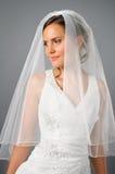 Bella sposa sotto il velare in studio Fotografia Stock Libera da Diritti