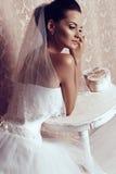 Bella sposa tenera in vestito da sposa elegante Fotografia Stock Libera da Diritti