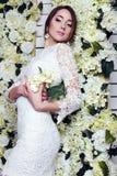 Bella sposa tenera in vestito da sposa elegante dal pizzo Fotografia Stock