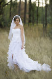 Bella sposa in una regolazione all'aperto naturale Immagine Stock