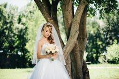 Bella sposa in vestito bianco vicino ad un albero Fotografie Stock