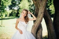 Bella sposa in vestito bianco vicino ad un albero Fotografie Stock Libere da Diritti