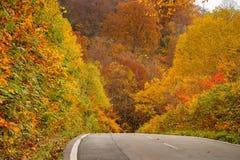 Bella stagione di colore di autunno ad area di Hachimantai Fotografie Stock