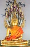 Bella statua di Buddha con i serpenti fotografia stock