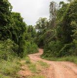 Bella strada campestre che funziona lungo una foresta nelle montagne Fotografia Stock