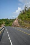 Bella strada della montagna di estate con gli alberi Fotografia Stock