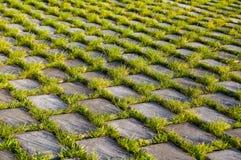Bella struttura del beton e dell'erba Fotografia Stock Libera da Diritti