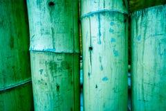 Bella struttura di bambù di legno naturale Fotografia Stock