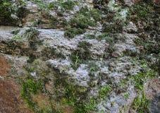 Bella struttura di una pietra dell'alta risoluzione fotografie stock libere da diritti