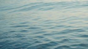 Bella superficie del mare calmo, ondeggiante tranquillamente un'onda Movimento lento archivi video