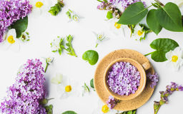 Bella tazza con i fiori lilla su un fondo bianco Immagine Stock Libera da Diritti
