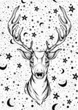 Bella testa disegnata a mano dei cervi sul fondo del cielo notturno Opera d'arte isolata su bianco Immagini Stock Libere da Diritti