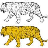 Bella tigre di schizzo su un fondo bianco Illustrazione di vettore Immagini Stock Libere da Diritti