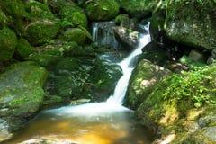 Bella torrente montano con Moss Covered Stones Fotografia Stock Libera da Diritti
