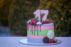 Bella torta di compleanno con il numero diciassette fotografia stock libera da diritti