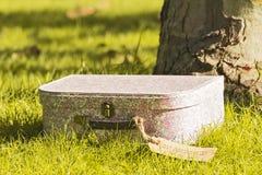 Bella valigia d'annata nel parco di autunno fotografia stock