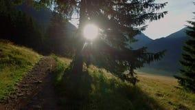 Bella valle Chocholowska all'alba, montagne di Tatra, Polonia stock footage