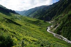 Bella valle in Georgia Immagine Stock Libera da Diritti