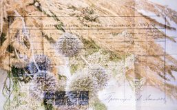 Bella vecchia lettera decorata con i fiori fotografia stock libera da diritti