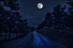Bella via del villaggio del paesaggio con le costruzioni e gli alberi e grande luna piena al cielo notturno Grande Caucaso Natura fotografie stock