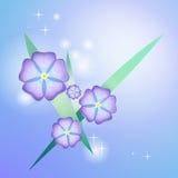Bella viola stilizzata Immagini Stock