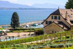 Bella vista al lago Lemano o alle montagne della bacca Leman e dell'alpe attraverso il giardino sulla collina di Nyon Fotografia Stock