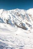 Bella vista alle alpi ed agli ski-lift svizzeri di inverno Fotografie Stock