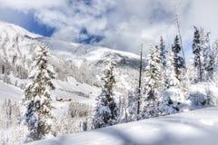 Bella vista alle alpi svizzere di inverno, Berner Oberland, Adelboden Immagine Stock