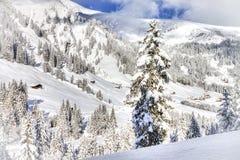 Bella vista alle alpi svizzere di inverno, Berner Oberland, Adelboden Fotografia Stock